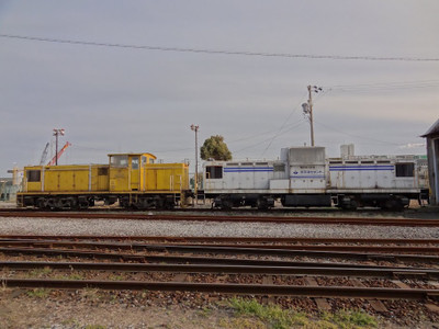 Dsc00565