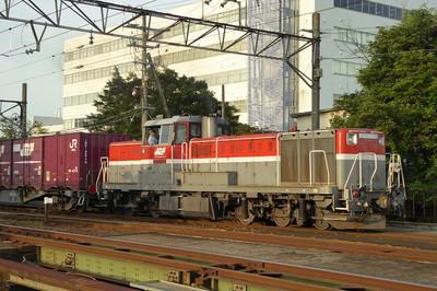 Sp1180613